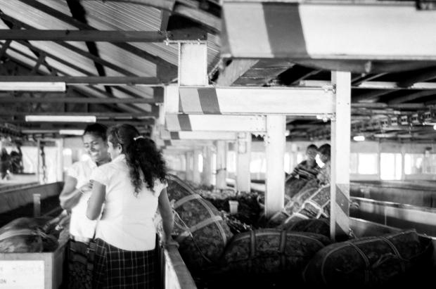 SriLanka-2014-941
