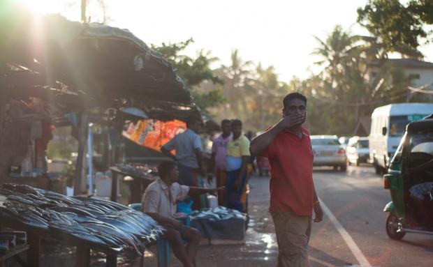 SriLanka-2014-250
